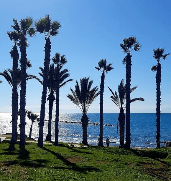 Mindennapi látvány Cipruson