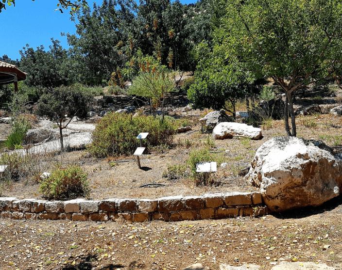 Botanikus-kert
