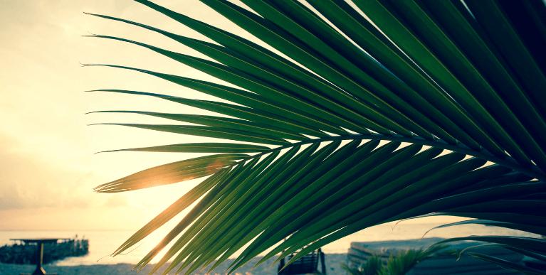 Ciprusi időjárása Ciprusi Nap